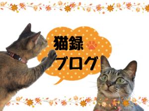 猫ログブログバナー01