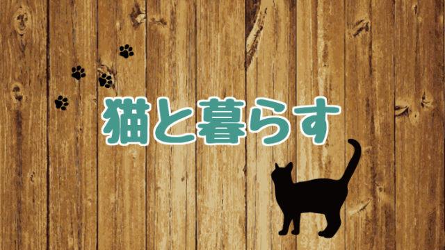 ブログ_アイキャッチ_猫と暮らす
